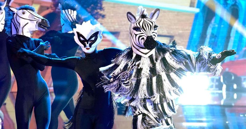 Masked Dancer Zebra revealed as world boxing champion