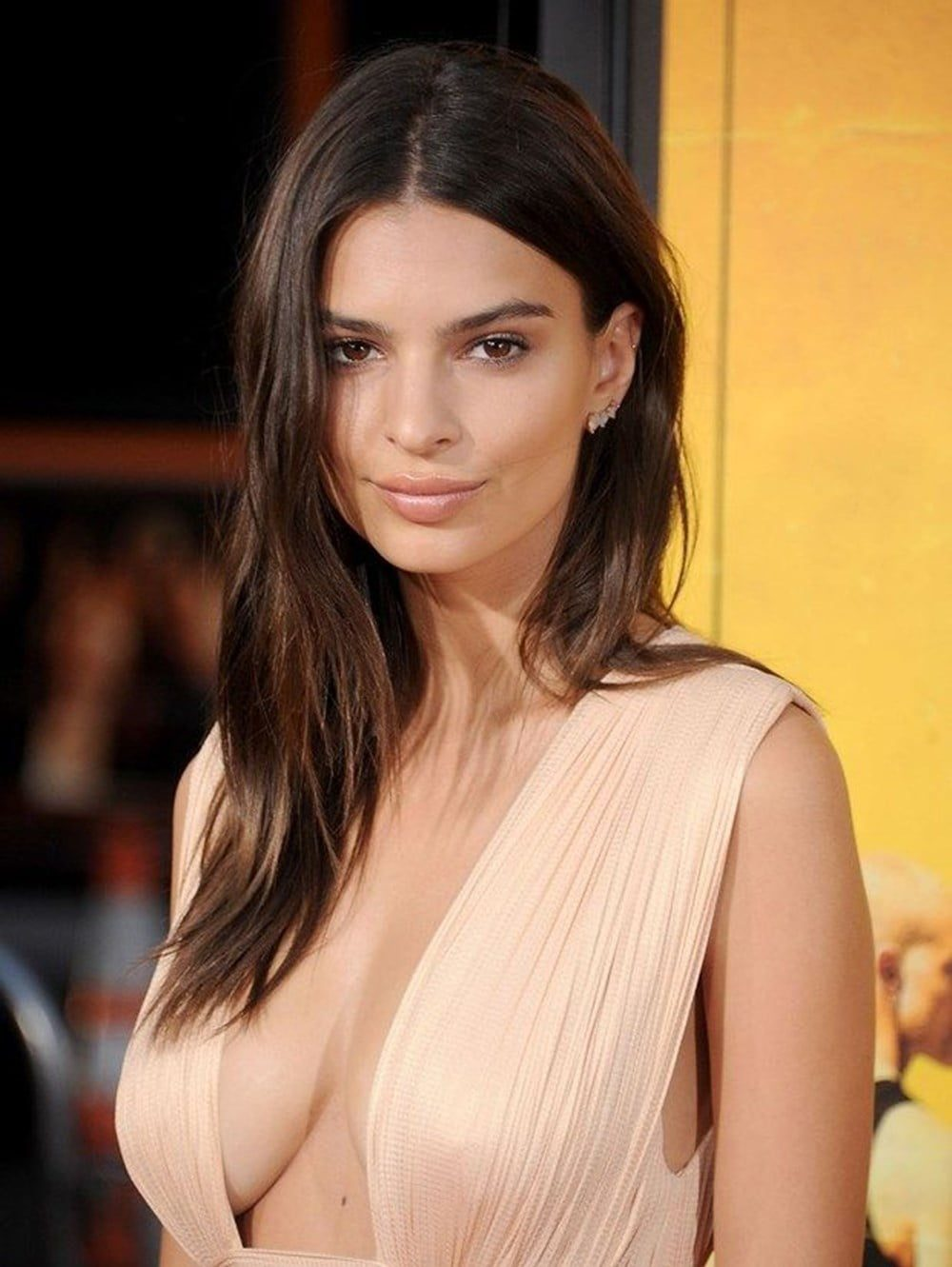 Photos of the popular American model Emily Ratajkowski with her nude work 14