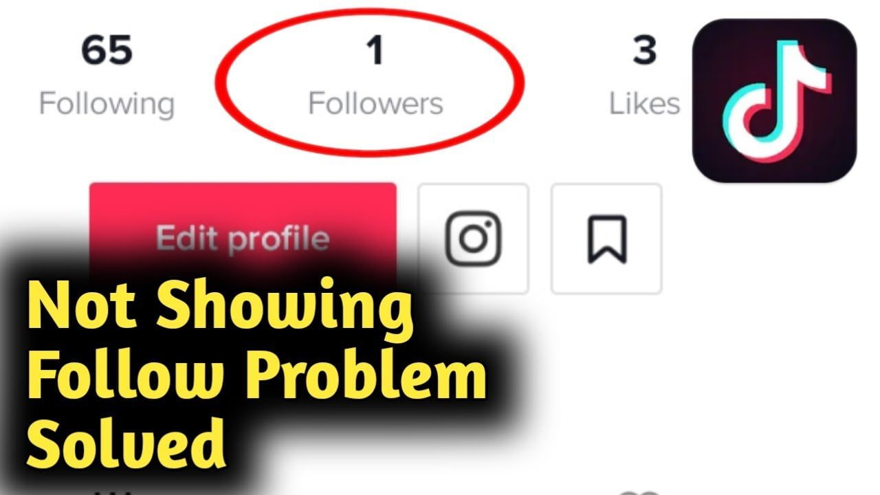 0 TikTok Followers Can this glitch be fixed 2
